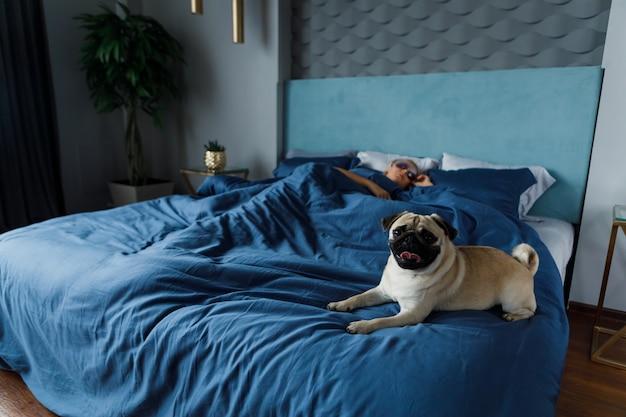 Frau schläft und ihr hund liegt auf dem bett. hundebesitzer