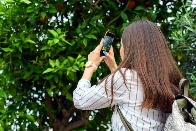 Frau steht am orangenbaum und fotografiert die früchte