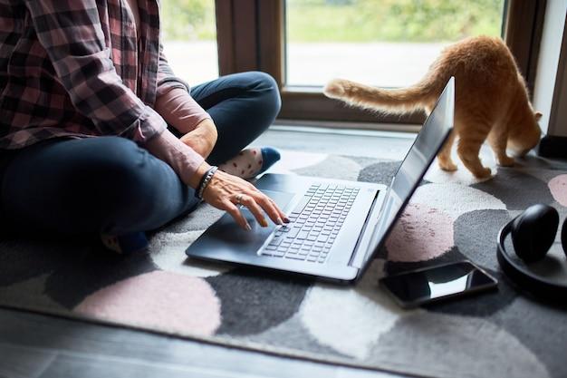 Frau sucht tierarzt-website auf laptop, um katze für tierärztliche beratung zu registrieren