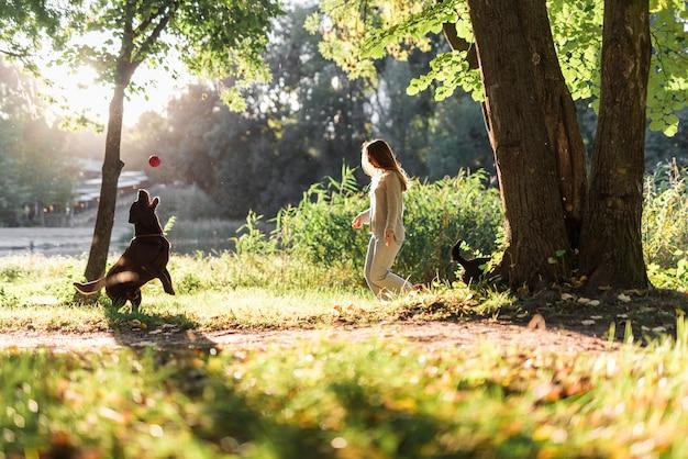 Frau und labrador, die mit ball im park spielen