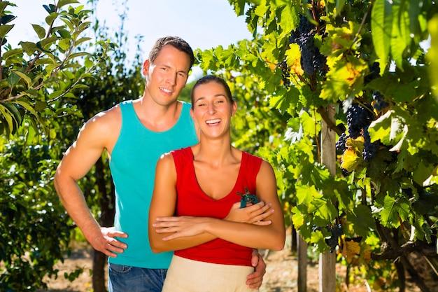 Frau und mann stehen im weinberg