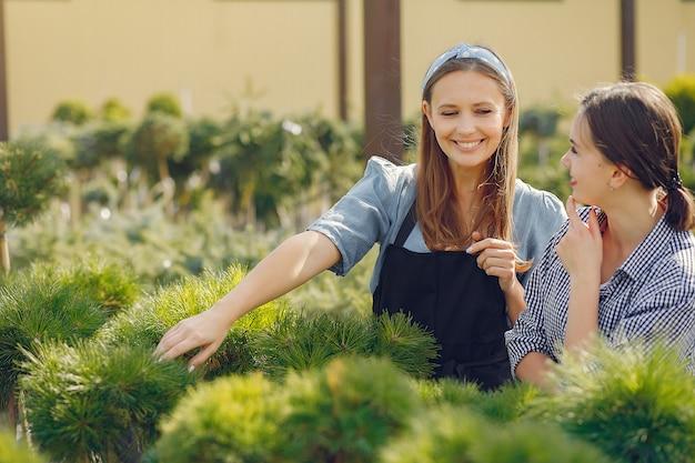Frauen arbeiten in einem gewächshaus mit grünen bäumen