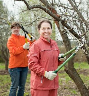 Frauen beschnitten zweige im obstgarten