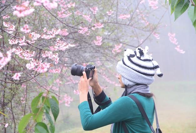 Frauen, die fotos von rosa blumen machen, blühen wunderschön in der natur oder sakura in voller blüte