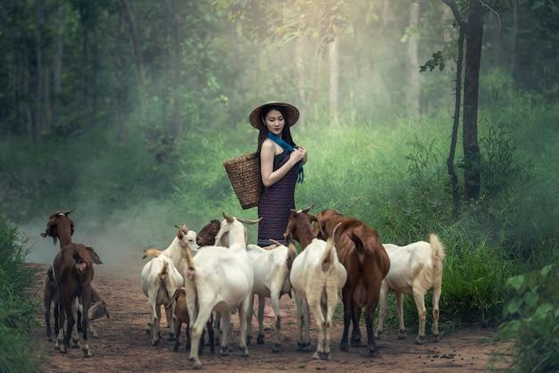 Frauen mit ziege in thailand