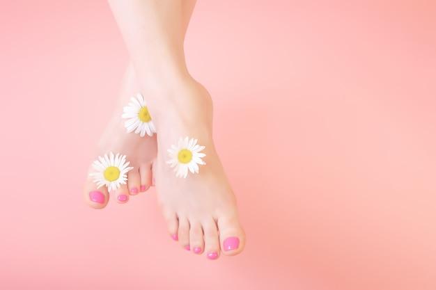 Frauenbeine auf einem rosa hintergrund. verziert mit blumen kamille. naturkosmetik, spa, pediküre, hautpflegekonzept