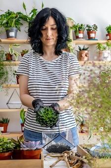 Frauenfloristin verpflanzt sukkulenten in glasflorarien mit dekor-botanik-kunstkomposition
