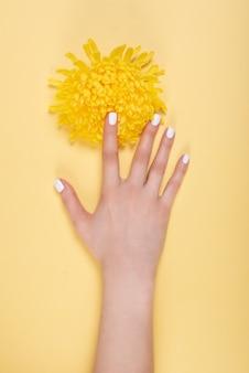 Frauenhände mit maniküre und ehering zwischen weißer spitze und kleinen blumen