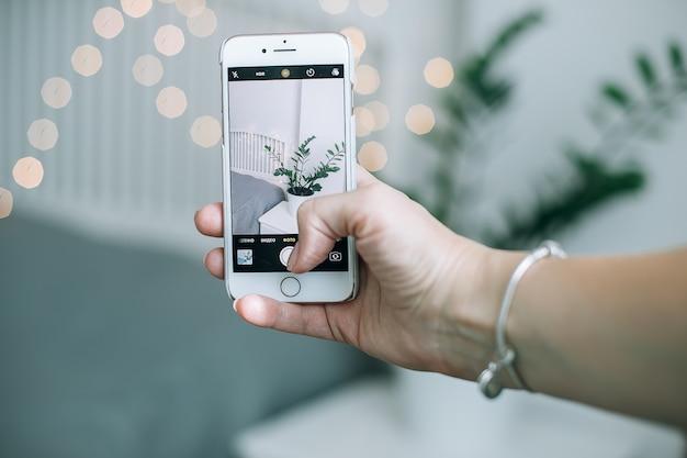 Frauenhänden machen foto von smartphone. grüner ficus der zimmerpflanze im weißen topf auf nacht nahe dem bett