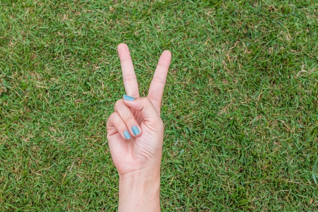 Frauenhand, die das friedenszeichen oder nummer zwei mit zwei fingern auf grünem gras hält