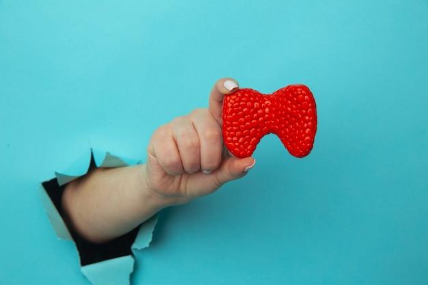 Frauenhand, die eine schilddrüse aus einem loch zeigt, das in der blauen papierwand zerrissen wird