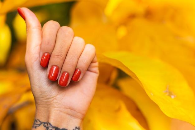 Frauenhand mit orange maniküre