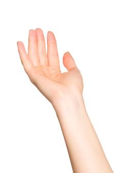 Frauenhand, welche die geastures, getrennt auf weiß tut