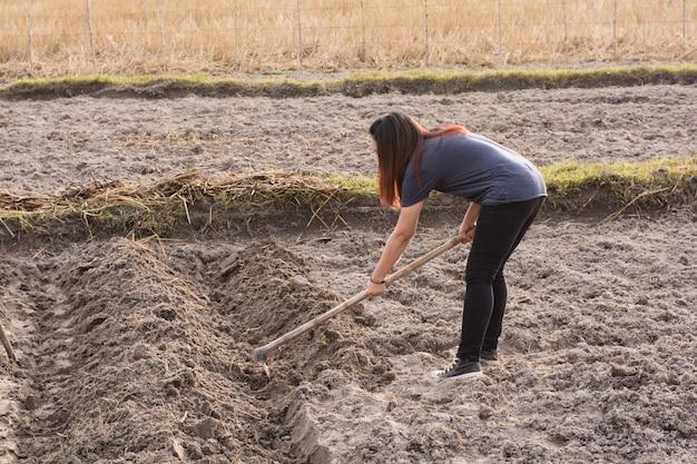 Frauenlandwirt, der spaten am feld in nakhon phanom, thailand hält