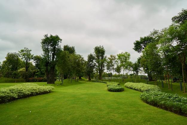 Fresh park natur schöne hintergründe
