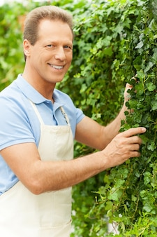 Freude an seiner arbeit mit pflanzen. schöner reifer mann in uniform im garten und blick in die kamera