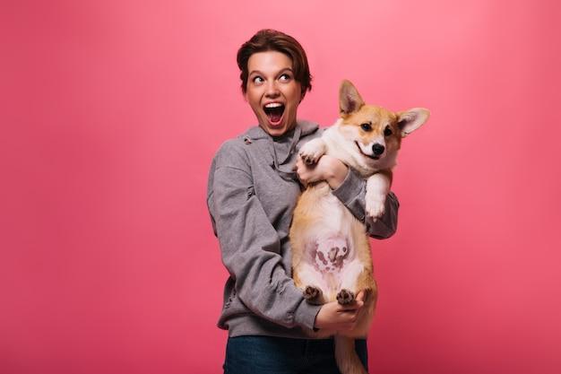 Freudige frau im grauen kapuzenpulli, der corgi auf rosa hintergrund hält. emotionales jugendlich mädchen in jeans spielt mit hund auf isoliert