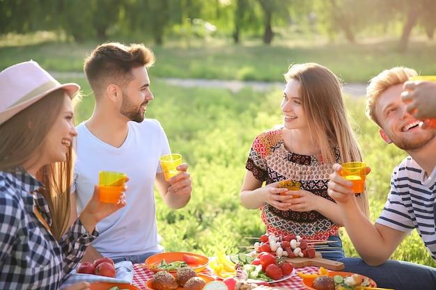 Freunde beim picknick am sommertag