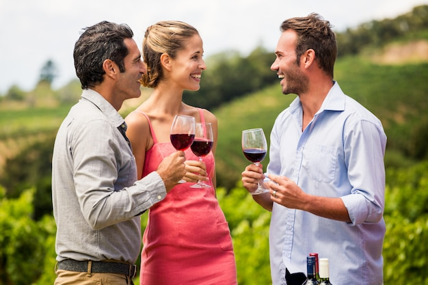 Freunde genießen rotwein