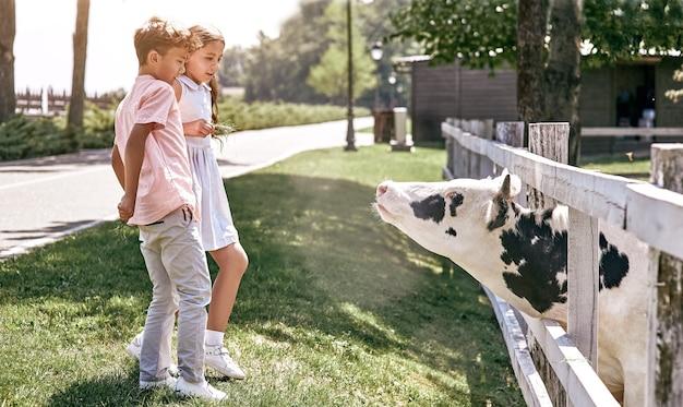 Freundschaft kleiner junge und mädchen, die zusammen im freien spazieren gehen