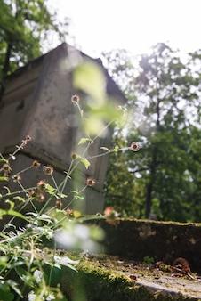 Friedhofserinnerung und nostalgie