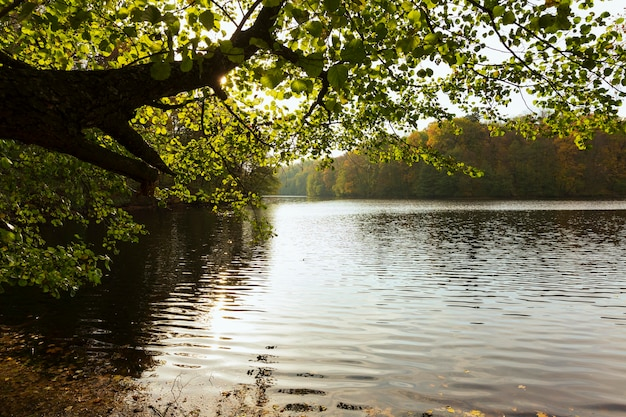Friedliche mutter natur landschaft