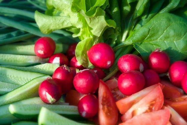 Frisch geerntetes gemüse aus eigenem anbau, radieschen, spinat, tomaten, gurken.