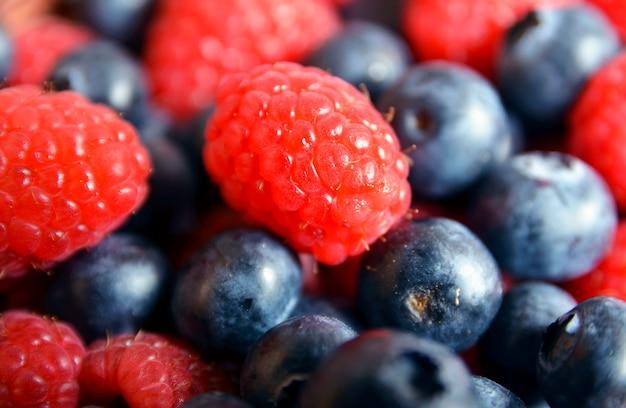 Frisch gepflückte bio-himbeeren und heidelbeeren. heidelbeere und himbeere. gesunde ernährung, sommerfrüchte oder diätkonzept.
