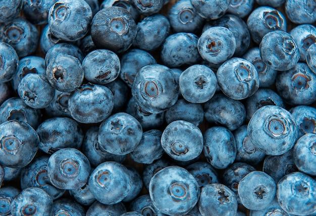 Frisch gepflückte blaubeeren als natürlicher lebensmittelhintergrund. konzept für gesunde ernährung