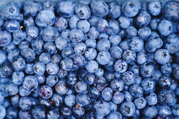 Frisch gepflückte blaubeeren