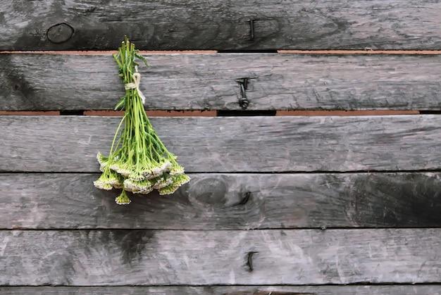 Frisch gepflückte medizinische kräuter, die draußen an der holzwand hängen. schafgarbe pflanze.