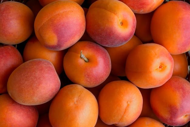 Frisch reife aprikosen