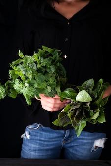 Frisch wachsen Sie Bündelgrün organische tadellose Blattbetriebsernte in der Hand