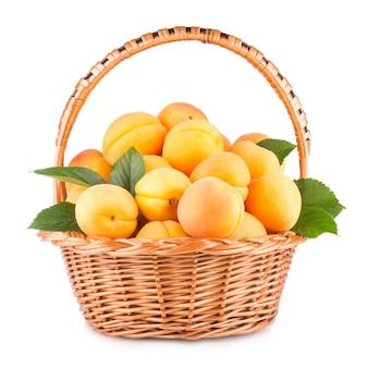 Frische aprikosen in einem korb auf weißem hintergrund