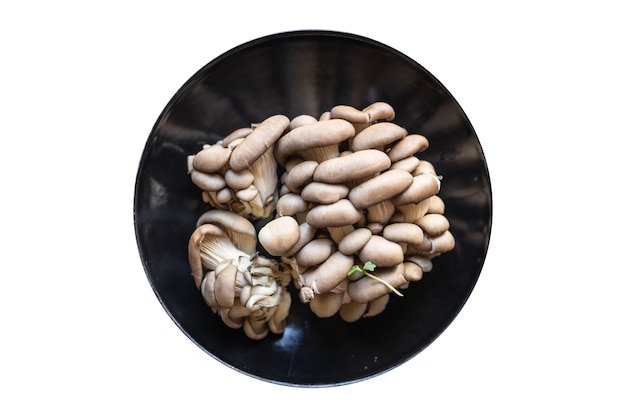 Frische austernpilze rohe pilze mahlzeit snack diät vegan oder vegetarisch