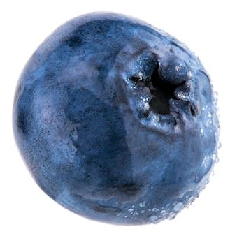 Frische blaubeeren mit wassertropfen.