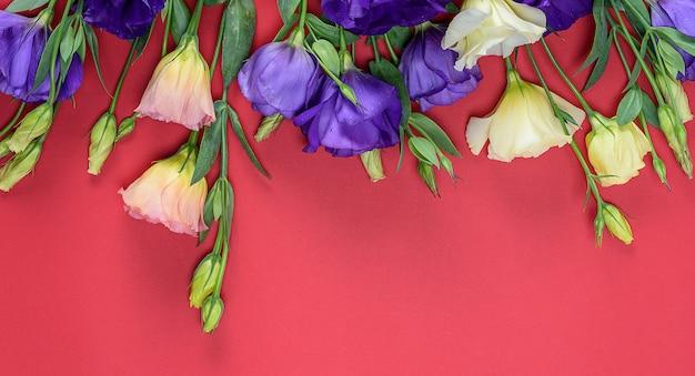 Frische blühende blumen eustoma lisianthus
