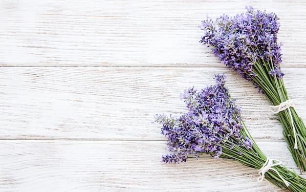 Frische blumen aus lavendel