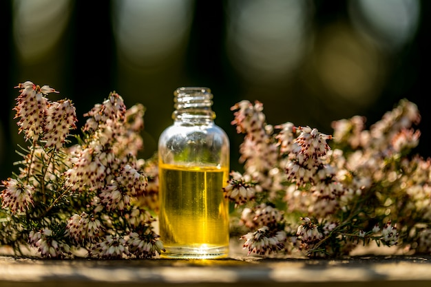 Frische blumen, verschiedene ätherische ölflaschen auf bokeh hintergrund. konzept alternative gesundheitsversorgung. aromatherapie-konzept.