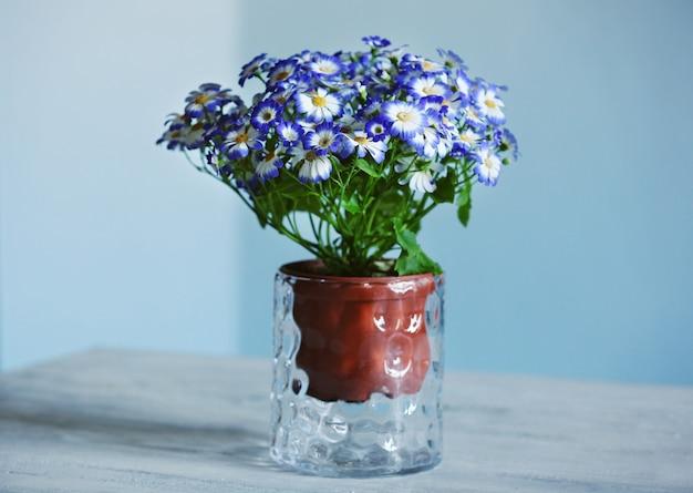 Frische cinerarien in einer vase auf holztisch