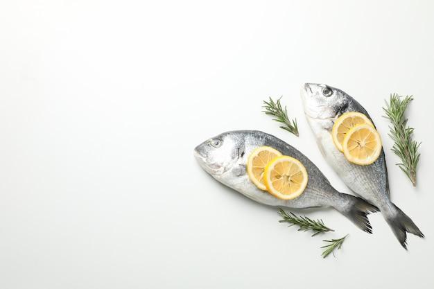Frische dorado-fische, zitrone und rosmarin auf weißem hintergrund, draufsicht