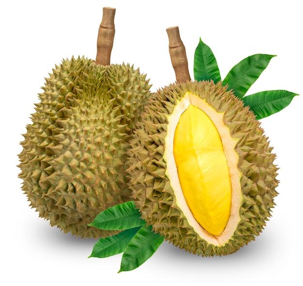 Frische durianfrüchte mit blättern isoliert