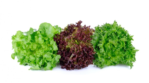 Frische eiche und rüschen eisbergblattsalat isoliert