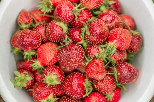 Frische erdbeere in der schüssel im sommer-selektiven fokus des gartens im freien