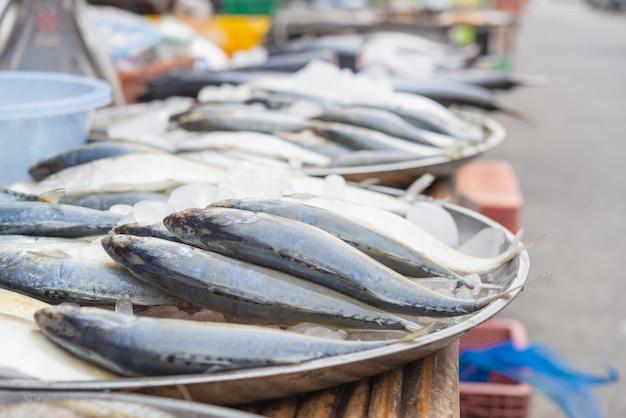 Frische fische auf eishintergrund