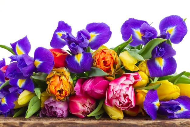 Frische frühlingstulpen und iris auf holzgrenze lokalisiert auf weiß