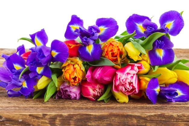 Frische frühlingstulpen und irisblumen auf holzgrenze lokalisiert auf weiß