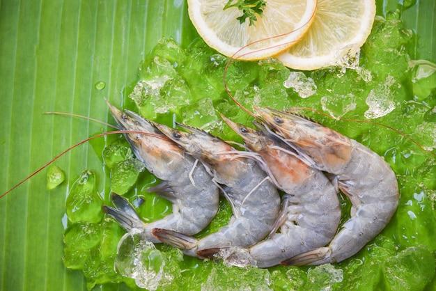 Frische garnelengarnelen mit zitrone und eis auf draufsicht des bananenblatthintergrundes - rohe garnele