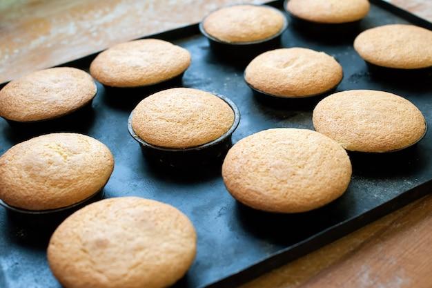 Frische gebackene einfache muffins, die auf backform abkühlen