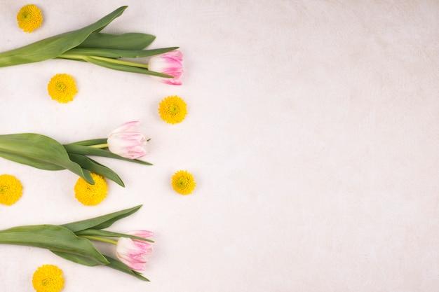 Frische gelbe blütenknospen und wunderbare tulpen auf grünen stielen